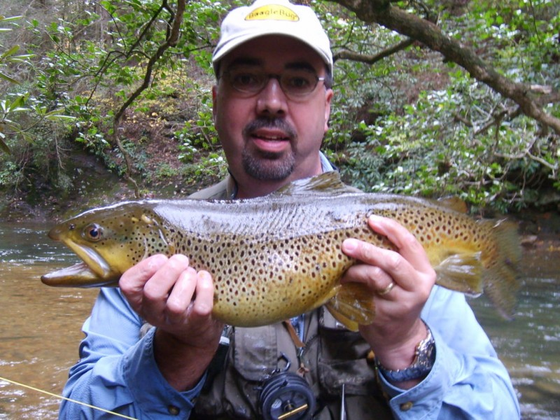 Weekly Fishing Report Your Guide To The Chattahoochee