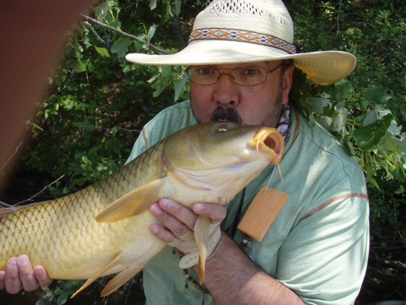 Weekly fishing report your guide to the chattahoochee for Chattahoochee river fishing