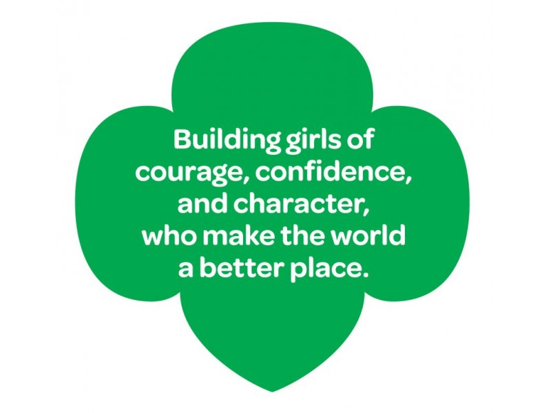 why i can t sell girl scout cookies patch