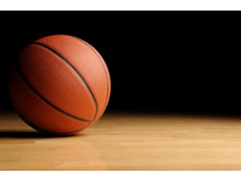Panthers Basketball Logo Panthers Feeder Basketball