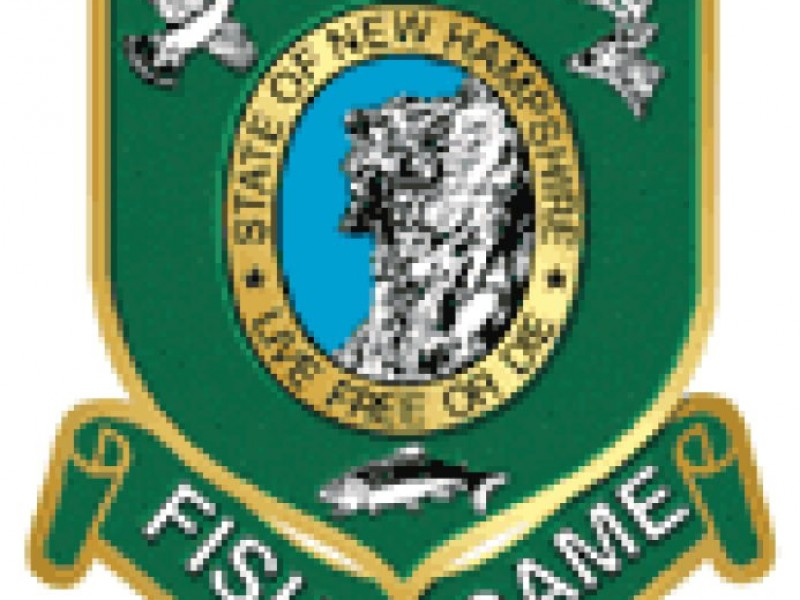 Free fishing day patch for Nh saltwater fishing license