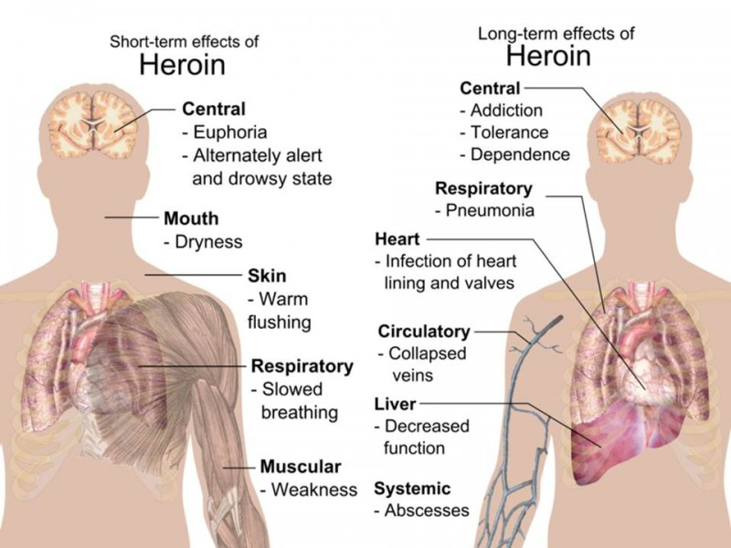 the characteristics and the use of marijuana an illicit drug While marijuana use has been an urgent  of drug use and reinforced by  distinctions among illegal drugs heroin, cocaine, or marijuana were .