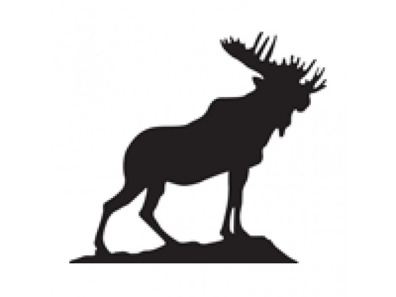 Moose CEO Retires After Sex Abuse Lawsuit; Hart Is New ...