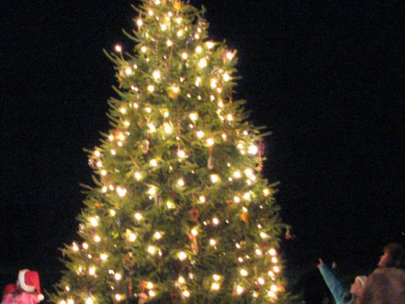 Marple Celebrates the Season With Annual Tree Lighting Ceremony ...