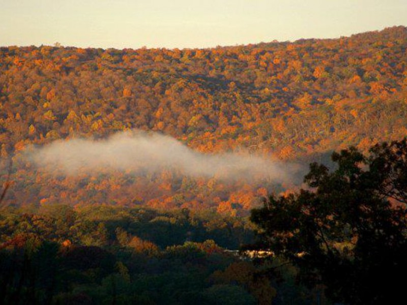 Mahwah Patch - Web Listings Local Business Listings