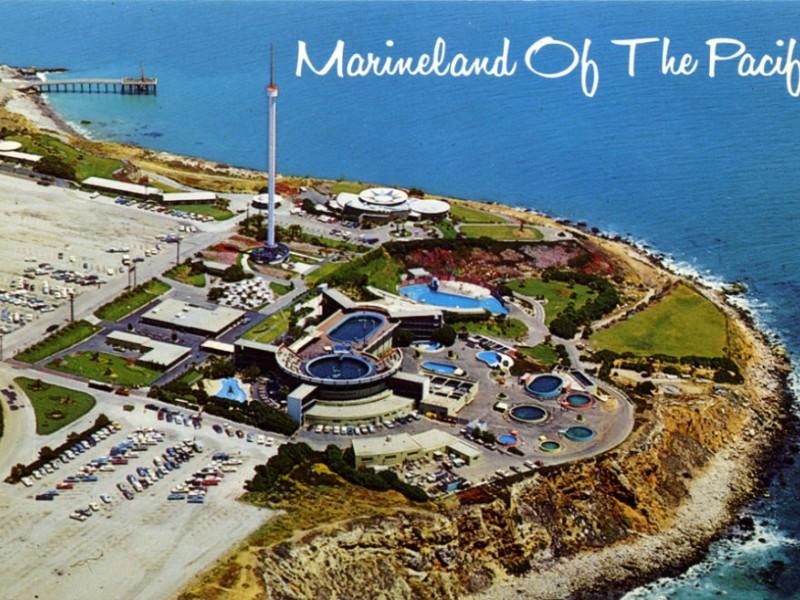 Blog: Why Did Marineland Close? - Palos Verdes, CA Patch