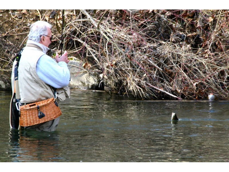 Frenchtown Park Pond, Hunt River Stocked With Trout for...