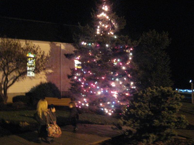 Christmas Tree Middletown Rhode Island