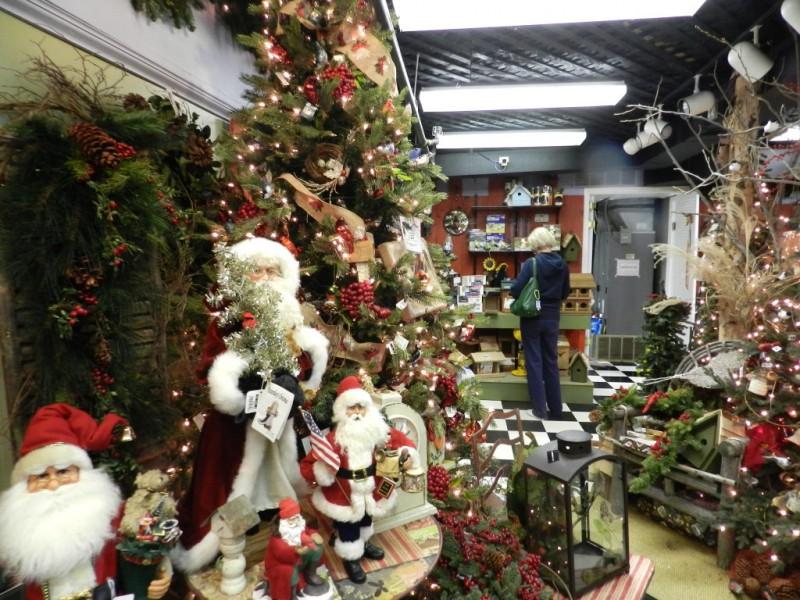 Ladies night kicks off holiday season at garden center patch - Merrifield garden center fairfax va ...