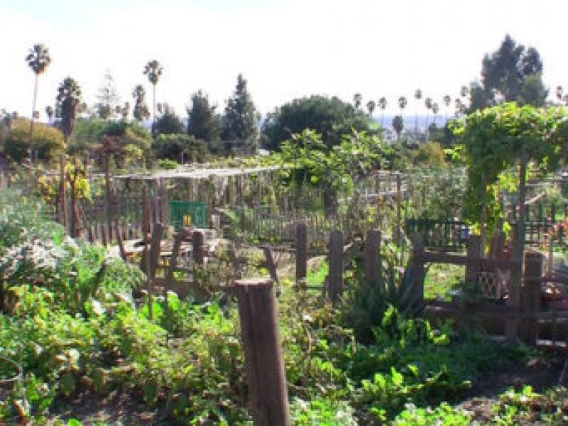 Wattles Garden Park Los Angeles Improvements to Wattles Garden Park Dedicated