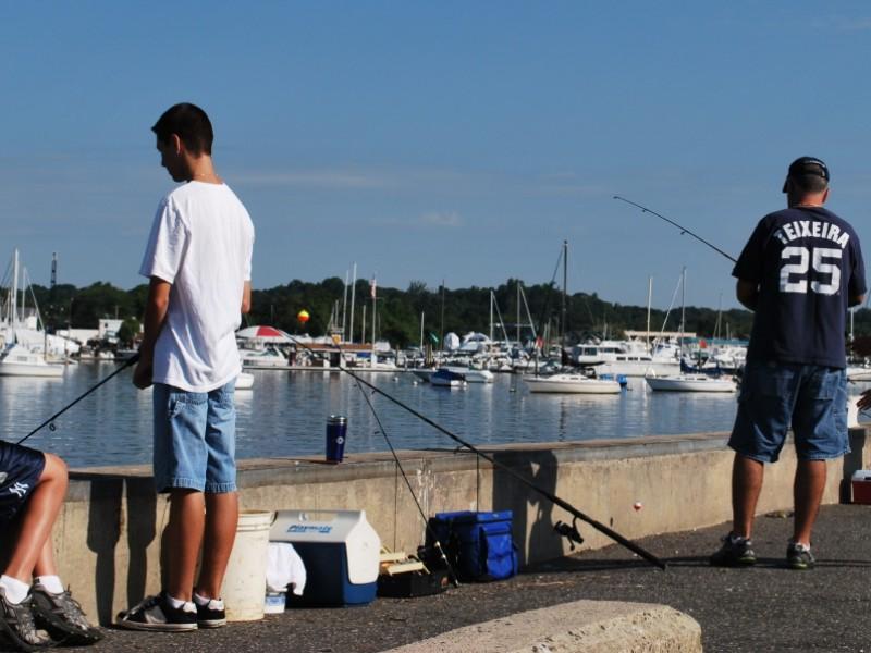 Fishing manhasset bay and western long island sound for Long island sound fishing report