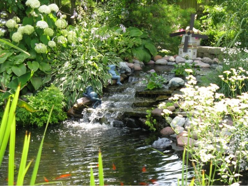 North suburban pond and garden walk arlington heights for Garden pond reddit