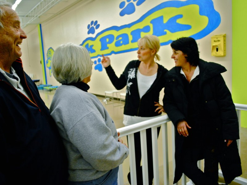 New Indoor Park Has Gone To The Dogs Hopkins Mn Patch