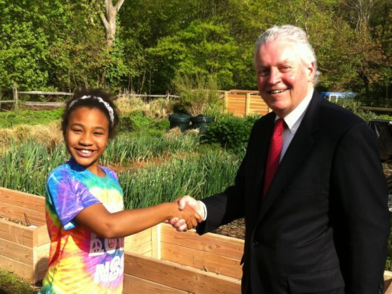 Raised Beds For Seniors The Disabled And Girl Scouts At