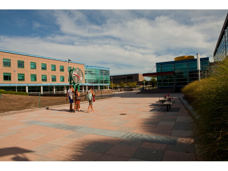 suny purchase college essays College essay for suny purchase admissions - essays & researches written by professional writers let the professionals do your homework for you get to know common advice as to how to get the best dissertation ever.