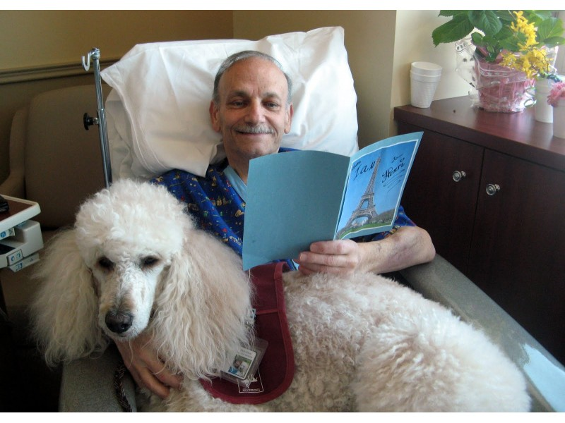 Therapy Dog Training For Nursing Homes
