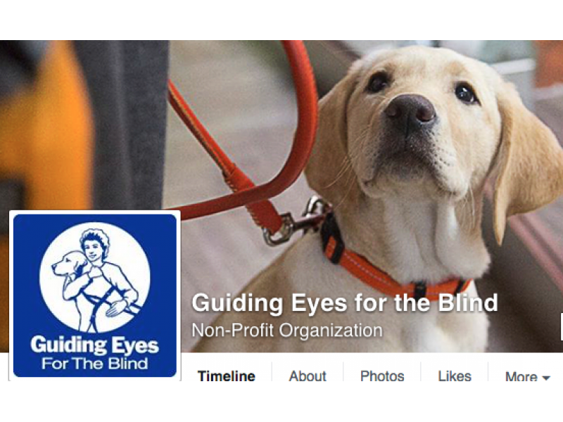 Development Incentive Helps Guiding Eyes For The Blind