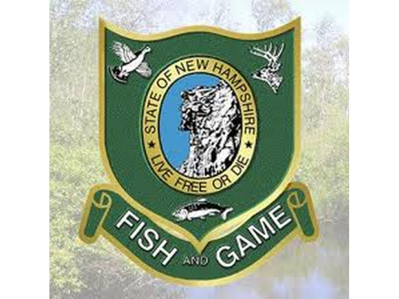 2014 new hampshire fishing and hunting licenses available for New hampshire fishing license