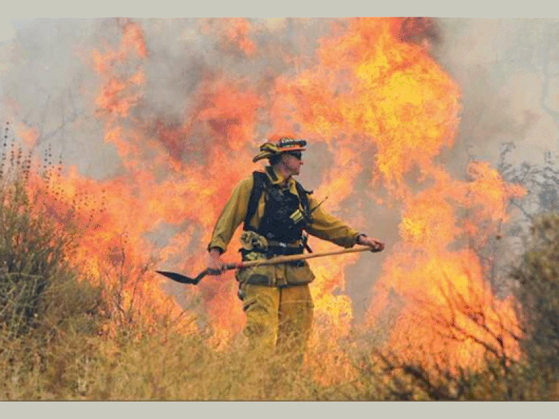 Firefighters Get Upper Hand on Calgrove Fire | Eagle Rock, CA Patch