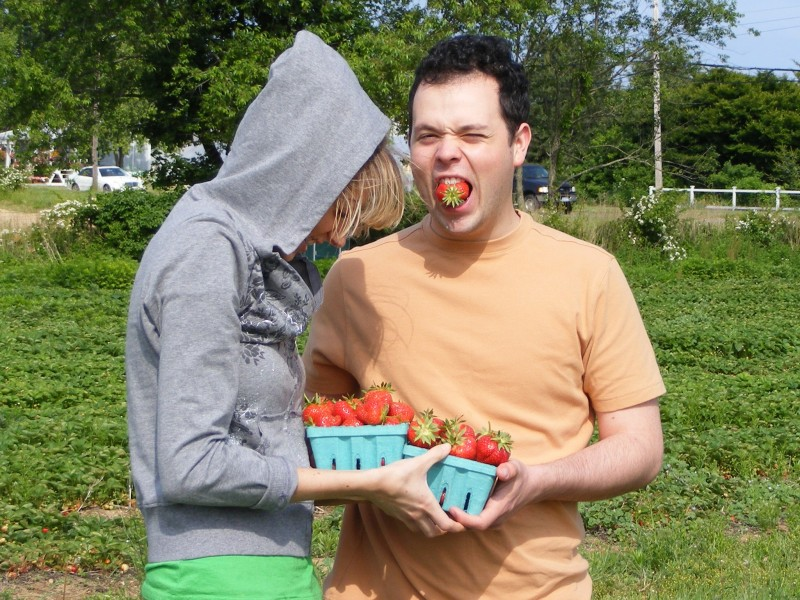 Strawberry Picking In Long Island