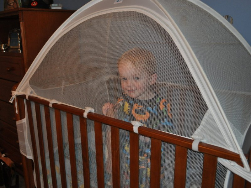 UPDATE Crib Tent May Be Dangerous