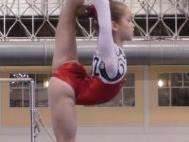 Gymnastics gabby douglas family