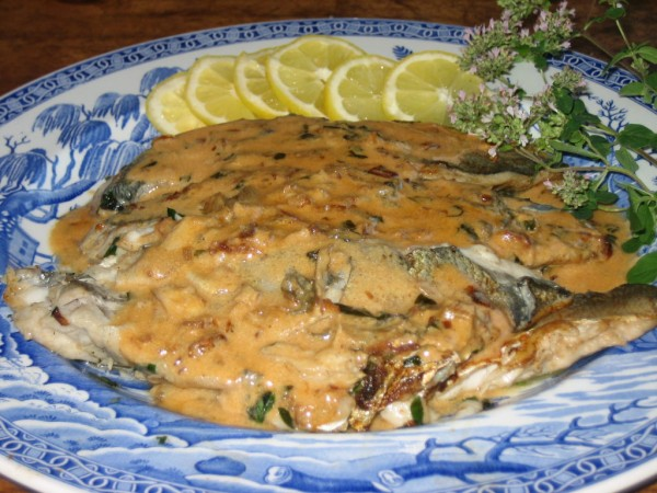 Recipe bluefish with a tomato cream sauce north fork for Blue fish recipes