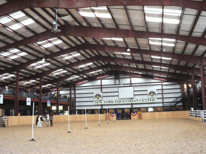 Equestrian Center Cancels Piccadilly Circus After Abuse