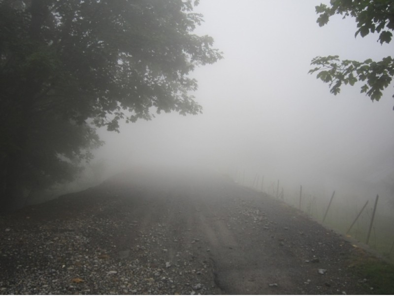 Traffic Advisory: Areas of Fog Expected Through Mid-Morning