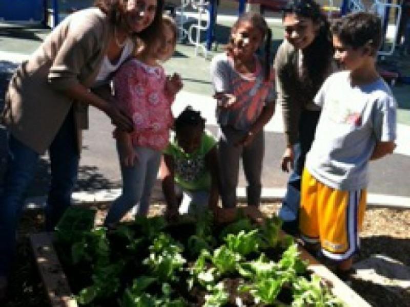 Echo Horizon School Wins Sony Pictures 'Green' Grant | Culver City ...