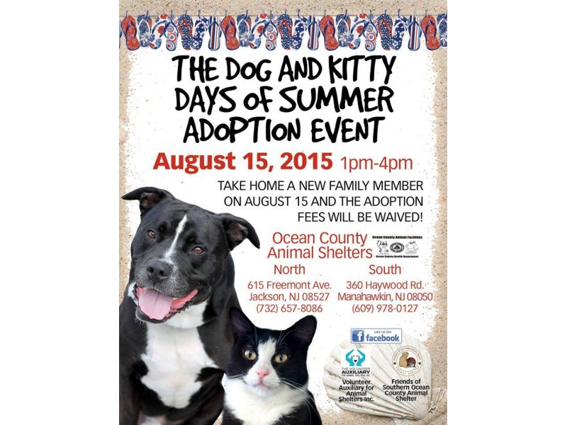 Free Dog Adoption In New Jersey