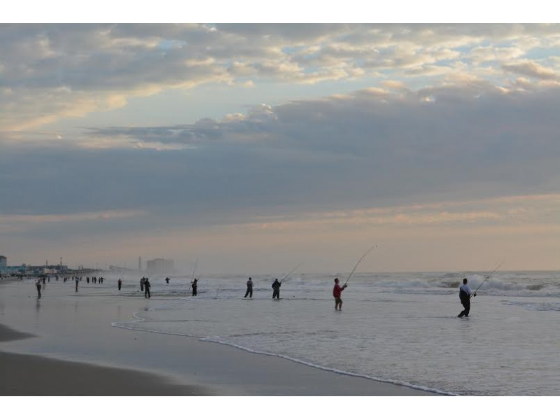 Ocean city surf fishing tournament set for oct 17 ocean for Surf fishing nj