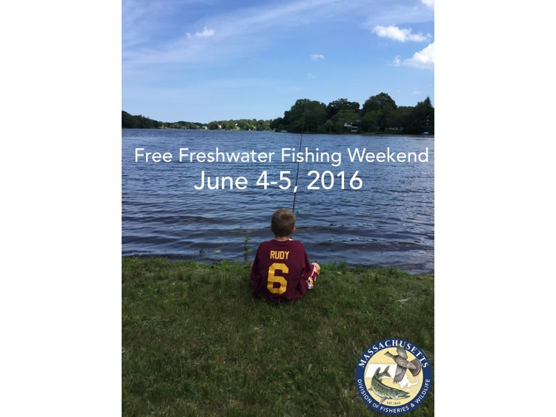 It 39 s free freshwater fishing this weekend in massachusetts for Fishing license ma