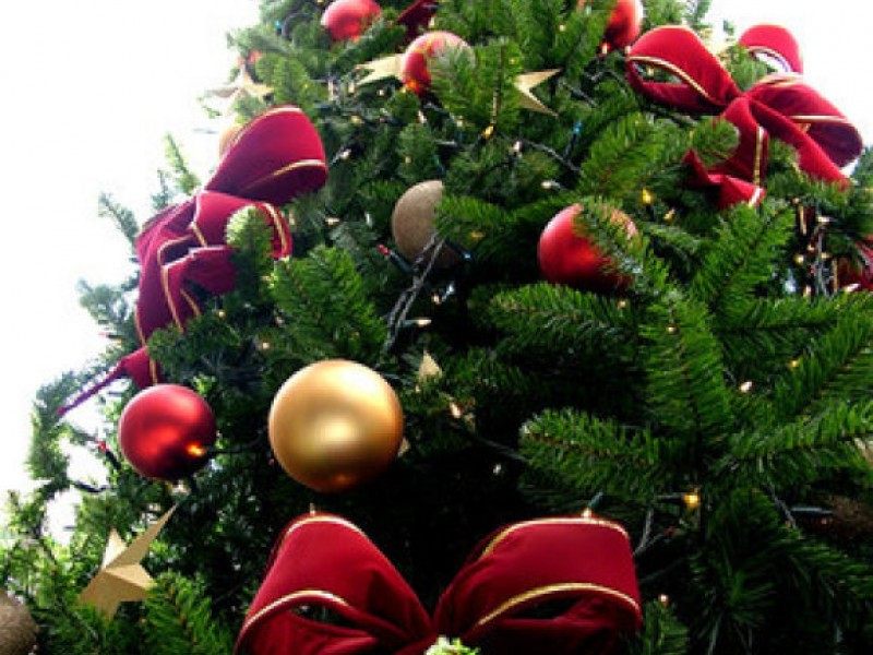 where to buy your christmas tree in foxborough 0 - Buy Christmas Tree