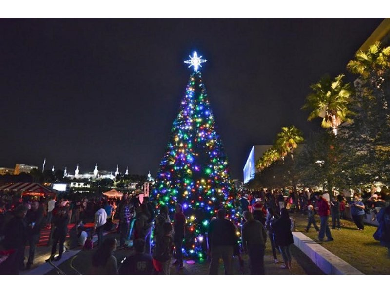 tampa tree lighting holiday parade just around the corner - Christmas Lights Tampa