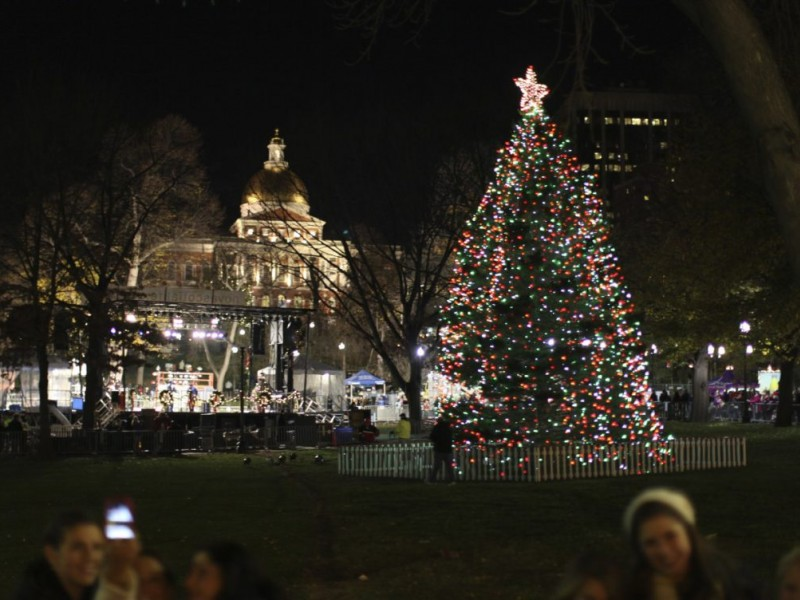 Lighting Of Commonwealth Avenue Mall And Boston Common Christmas  - Boston Christmas Tree Lighting