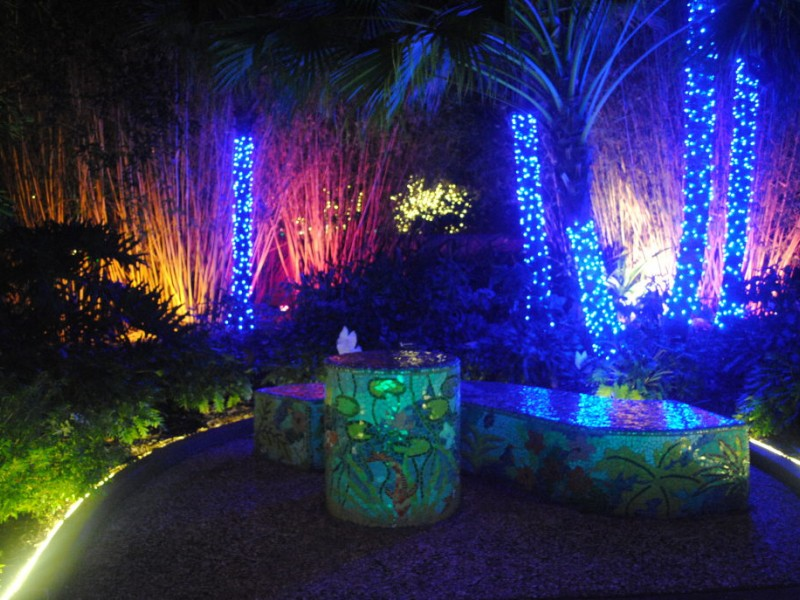 Strolling through the florida botanical gardens tarpon springs fl patch for Botanical garden christmas lights