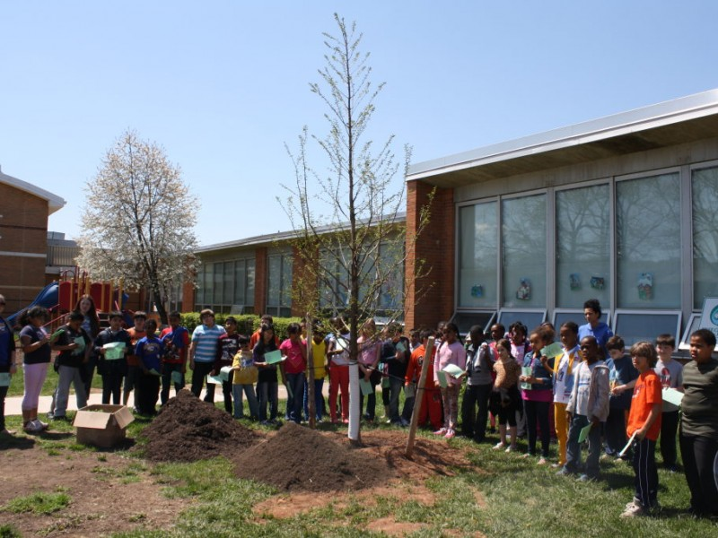 Redwood elementary celebrates arbor day west orange nj Garden grove unified school district jobs