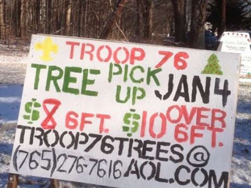 Curbside Christmas Tree Pickup by Holliston Boy Scouts - Holliston ...