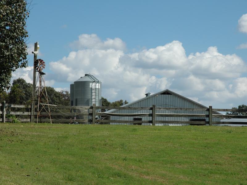 Springer Mountain Farms President Gus Arrendale Rules