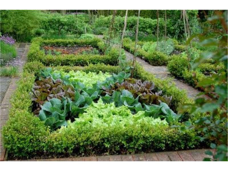Potager Gardens Bernardsville NJ Patch