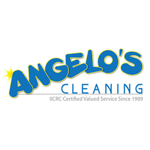 Patch User Profile For Angelo S Cleaning