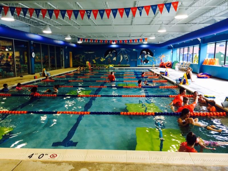 Goldfish Swim School Reston Is Hiring Reston Va Patch