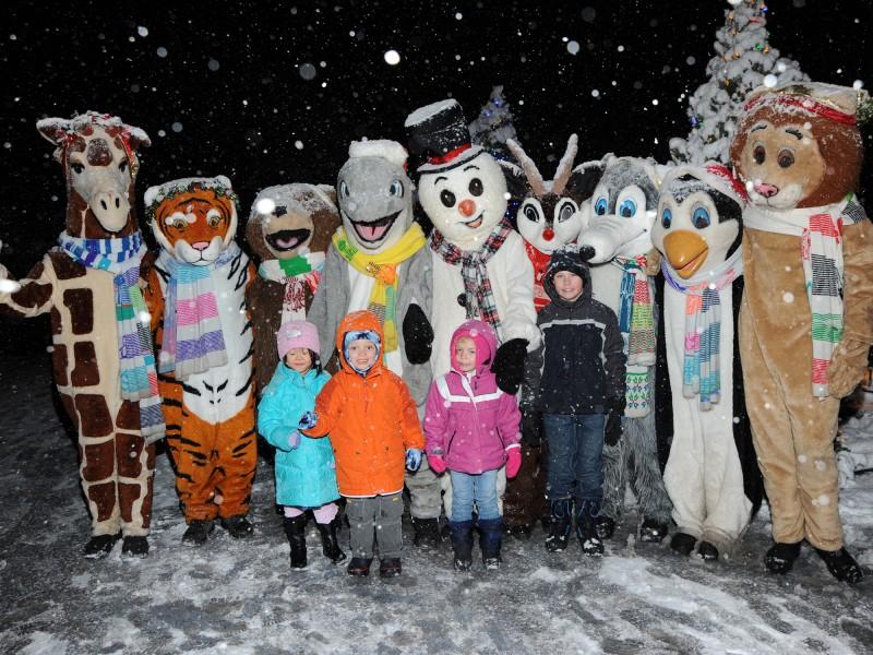 Brookfield Zoo's Holiday Magic Creates a Winter Wonderland ...