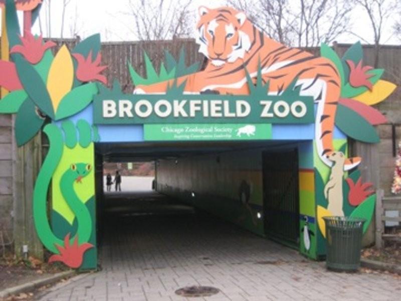 Brookfield Zoo's Schedules August-December Events - Western ...