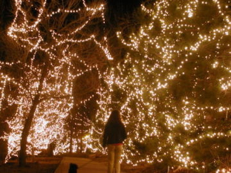 7 Christmas Light Shows in Northern Virginia and Maryland - Lake ...