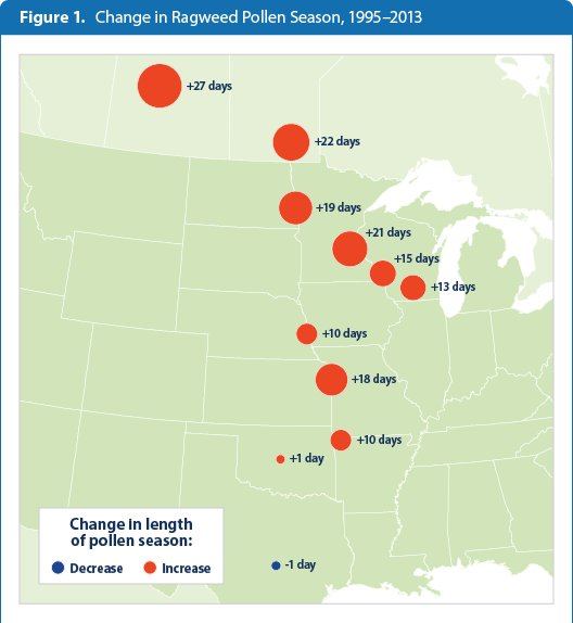Allergy Season Why It Keeps Getting Worse Across America US Patch - Us pollen map