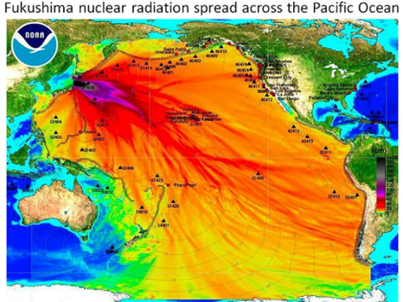 hollywood california map with Radiation Fukushima Detected Canadas Coast 0 on desertpalmshotel as well 3124241249 additionally 5 Reasons Must Visit Coastal Northern California together with Krusty Burger And Moes Tavern Now Open At Universal Studios Hollywood further Viewtopic.