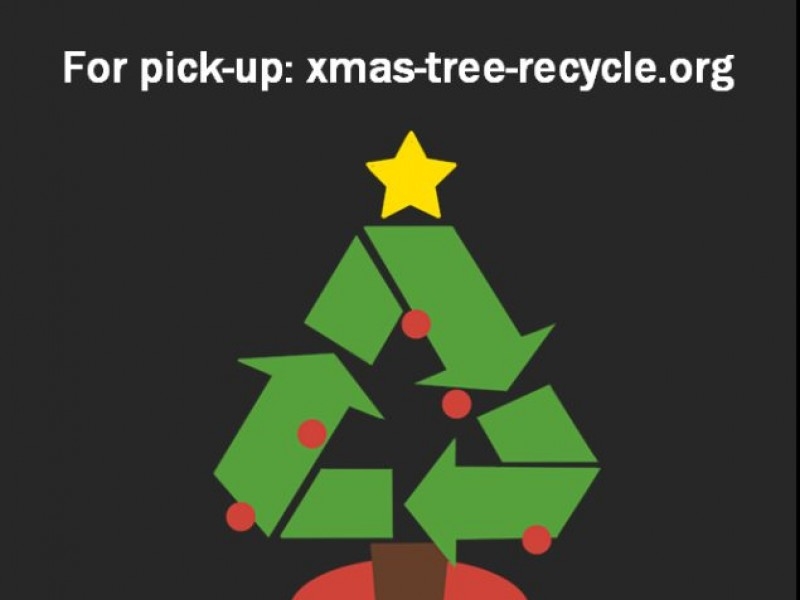 Woodbridge: Christmas Tree Pick Up and Recycling Project: Boy ...