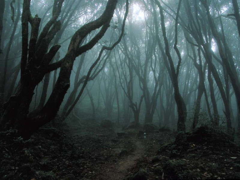 Top 5 Haunted Places In Maryland Owings Mills Md Patch